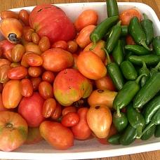 tomatoespeppersblog4